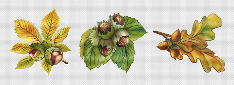 free cross stitch patterns -  Fall Nuts: a Chestnut, a Hazelnut and an Acorn - www.crossstitchclub.com - 1