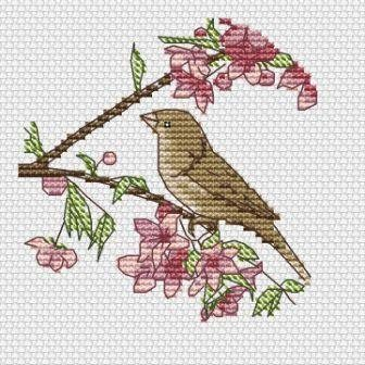 free cross stitch patterns -  The Small Bird - www.crossstitchclub.com - 1