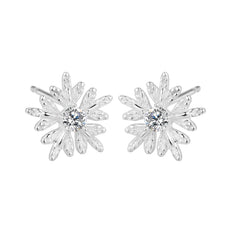 Snowflake Silver Earrings