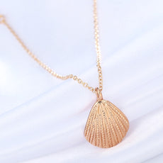 Free Ocean Seashell Necklace