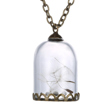 Dried Dandelion Cage shape Glass Necklace