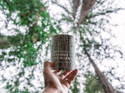 NATIONAL PARK CANDLE  | Redwood State Park | Avenue of The Giants 11 oz Candle