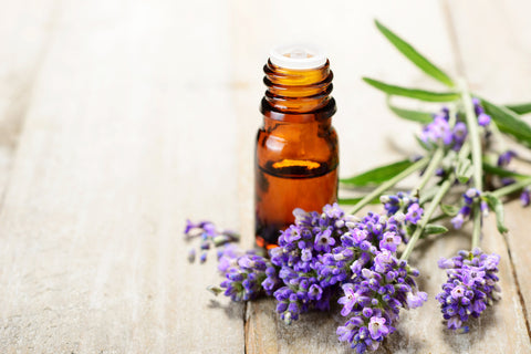 bottle of essential oils sitting next to lavender on table