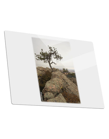Stone Tree Colorado Metal Panel Wall Art Landscape - Choose Size by TooLoud