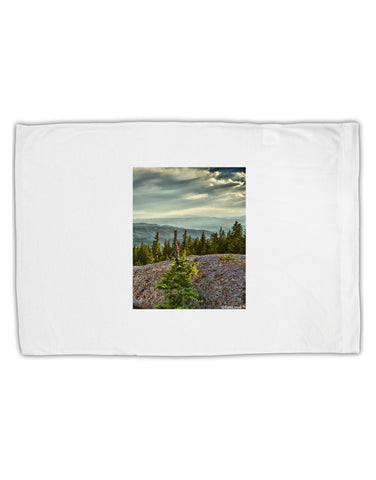 Nature Photography - Pine Kingdom Standard Size Polyester Pillow Case by TooLoud