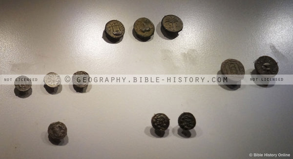 Bar Kochba Revolt Coins - Color Photo (Hi-Res. Download) 1-Year License