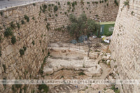 Floor of the Citadel of David - Color Photo (Hi-Res. Download) 1-Year License