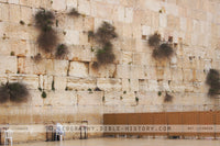 Western Wall - Color Photo (Hi-Res. Download) 1-Year License