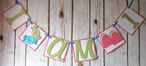 Candy Themed Mini Banner/High Chair Banner - We Bring the Party