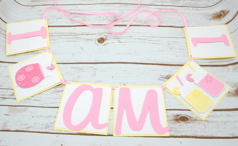 Pink Lemonade Mini Highchair Banner, Lemonade Stand Birthday, First Birthday Party