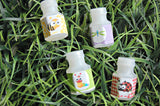 Bug Party Bubbles, Party Favor Bubbles, Bug Party Favor, Insect Party Favors - We Bring the Party - 2