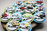 Insect Birthday Photo Banner Clips with Ribbon, Bug Birthday Photo Banner Clips - We Bring the Party - 2