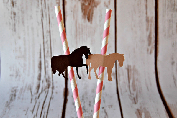 Cowgirl Themed Party Decorations, Western Style Paper Straws, Decorated Paper Straws, Set of 12 - We Bring the Party - 1