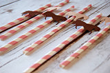 Cowgirl Themed Party Decorations, Western Style Paper Straws, Decorated Paper Straws, Set of 12 - We Bring the Party - 3
