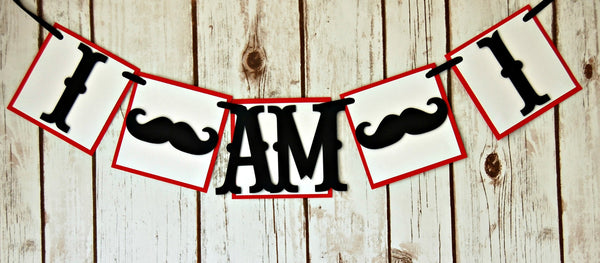Mustache Themed Party High Chair Banner - We Bring the Party