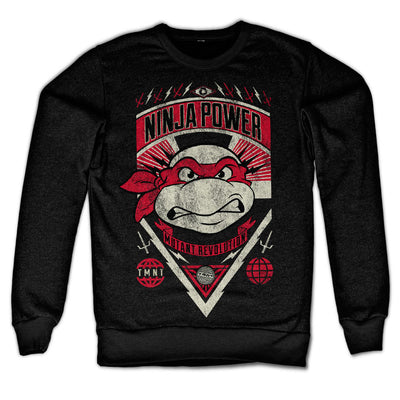 TMNT Ninja Power Sweatshirt