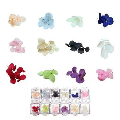 BMC 12 Color Real Decorative Nail Art Dried Flowers