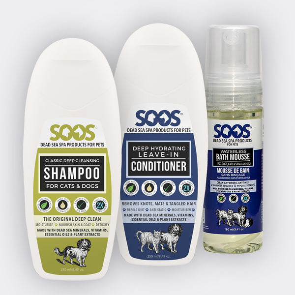 Quarantine Kit. Grooming Salon At Home