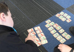 Students arranging dragon cards in groups