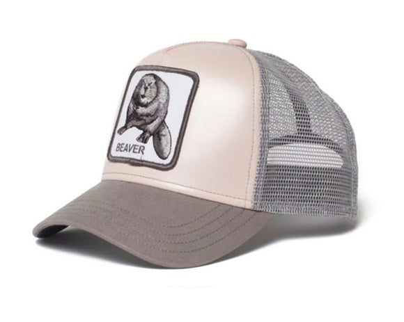 Goorin 'Dam It' Trucker Style Baseball Cap in Pink