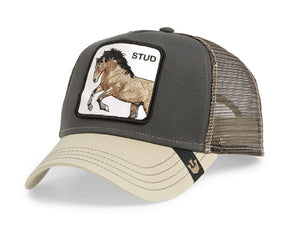 Goorin 'Stud' Trucker Style Baseball Cap in Green