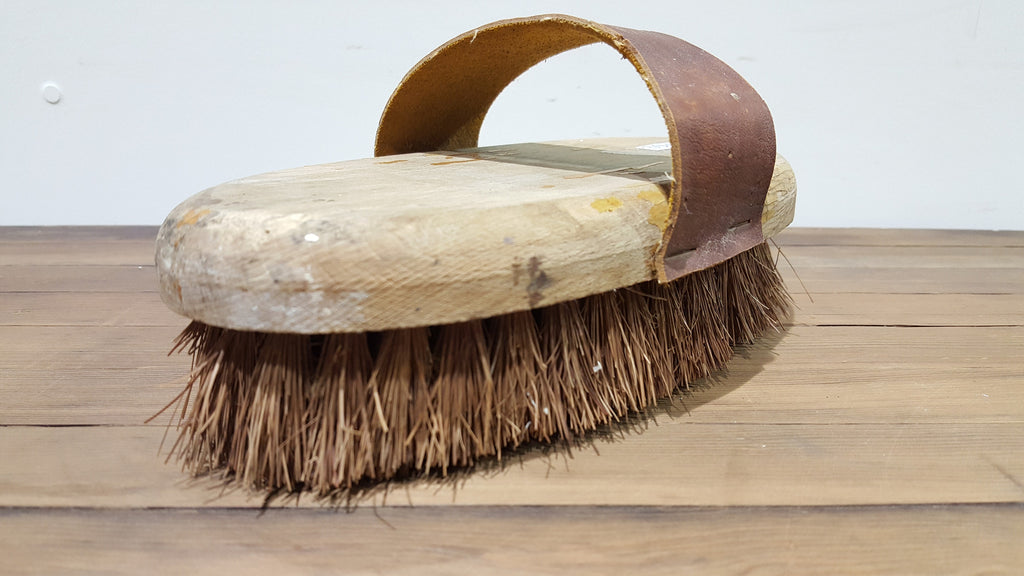 Horse Brush (equestrian decor)