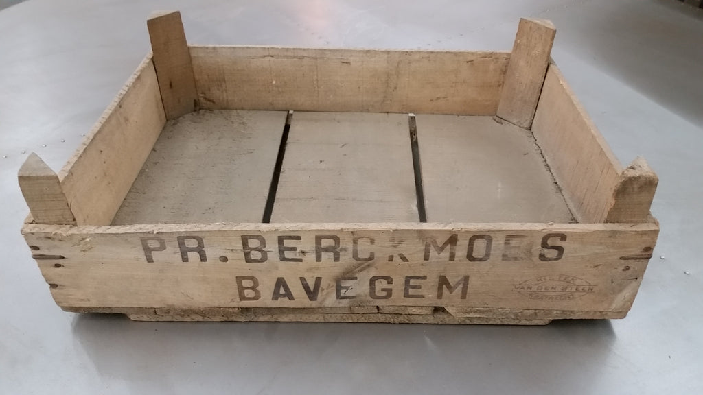 Stackable Crates from Bavegem, Belgium