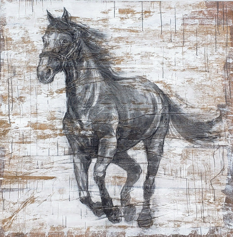 """Dark Horse"" Painting/Art"