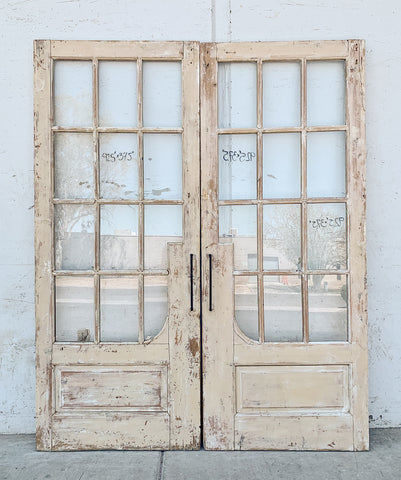 Pair of French Doors with 24 Panes