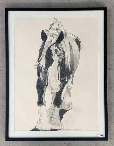 """Pepper Strolling"" Clydesdale Horse Charcoal Drawing/Art"