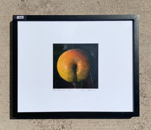 """Forbidden Plum"" Framed Photography/Art"