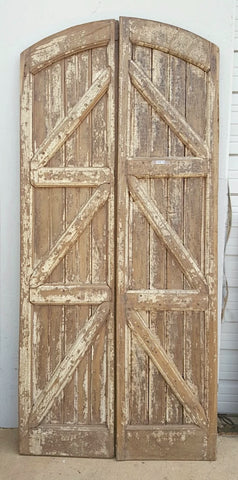 Pair of Arched Painted Wooden Doors