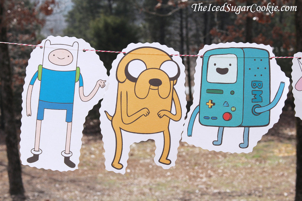 Adventure Time Birthday Party Ideas-Finn The Human, Jake The Dog, Beemo, Lady Raincorn, Beemo, Lumpy Space Princess, Ice King, Princess Bubblegum