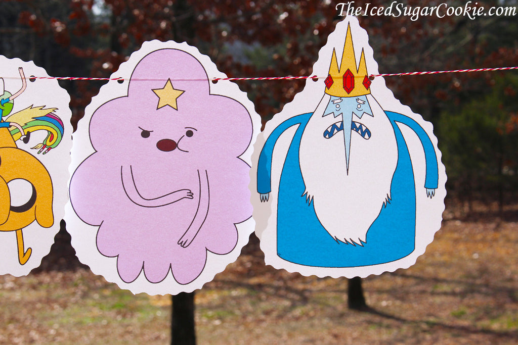 Adventure Time Birthday Party Ideas-Finn The Human, Jake The Dog, Beemo, Lady Raincorn, Princess Bubblegum, Lumpy Space Princess, Ice King-TheIcedSugarCookie.com