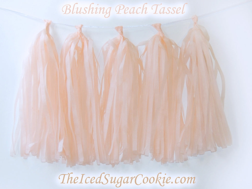 Blushing Peach Tissue Paper Tassel Garland Hanging Banner DIY Birthday Party TheIcedSugarCookie.com