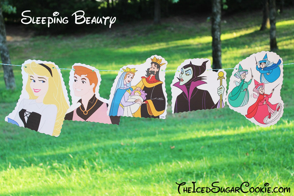 Sleeping Beauty Birthday Party Banner DIY Ideas-Aurora, Prince Phillip, King Stefan, Queen Leah, Maleficent, Flora, Fauna, Merryweather Fairies