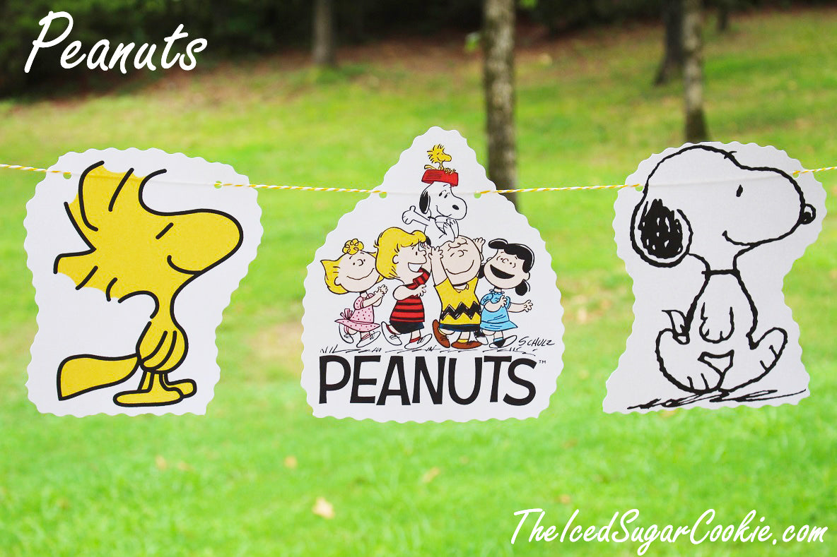 DIY Peanuts Gang, Snoopy, Woodstock, Charlie Brown, Sally, Lucy, Schroder Birthday Party Flag Hanging Banner DIY Ideas