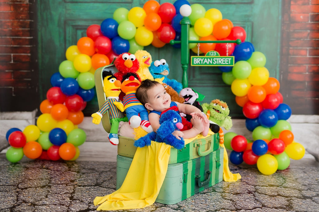 Bryan's Cookies And Sesame Street Birthday Party Cakes TheIcedSugarCookie.com Divine Delicacies Cakes, Christy & Co Photography, Balloons By Luz Paz