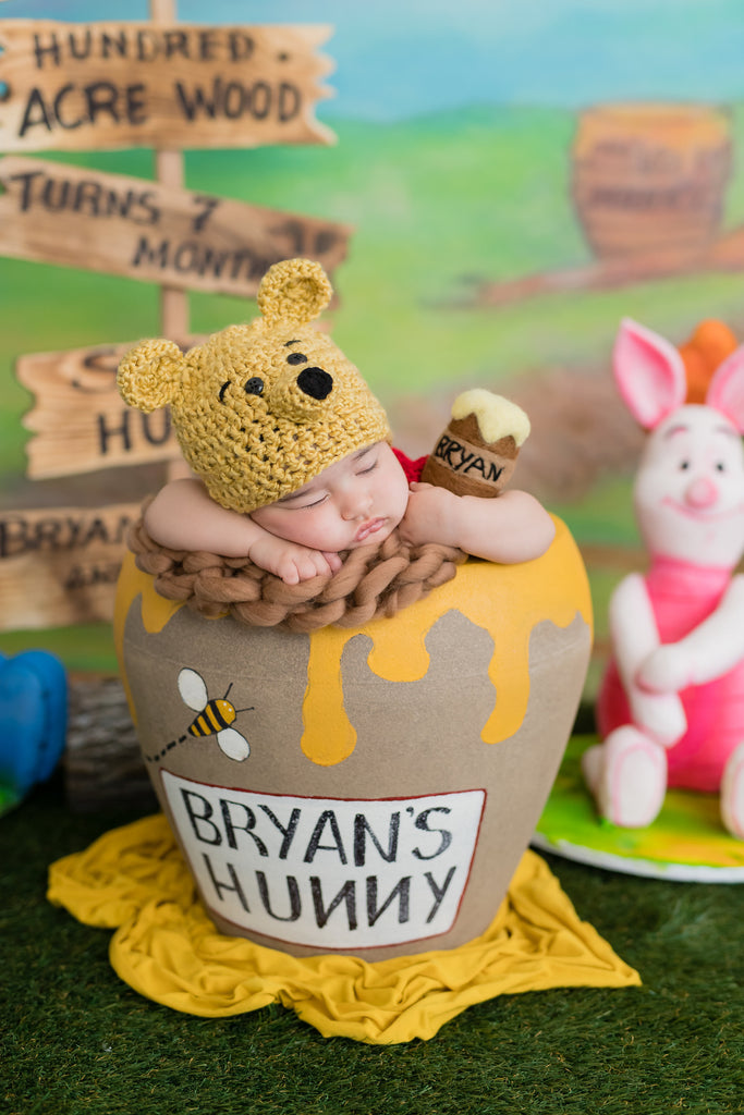 Bryan's Winnie The Pooh, Tigger, Piglet, Eeyore 7 Month Birthday Party Cakes TheIcedSugarCookie.com Divine Delicacies Cakes Christy And Co Photography