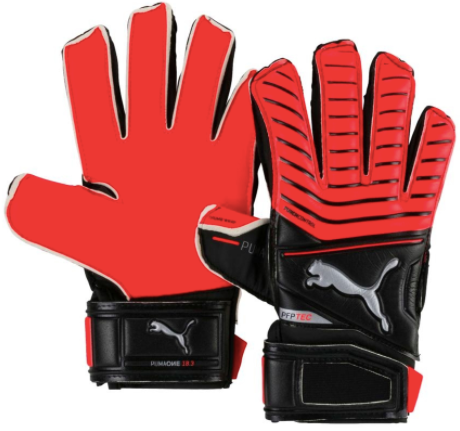 Puma ONE Protect 18 FS Gloves - soccerhome.ca