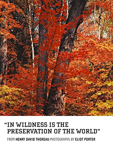 In Wildness Is the Preservation of the World -  ShopatGrace.com