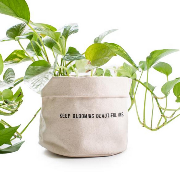 Keep Blooming Planter
