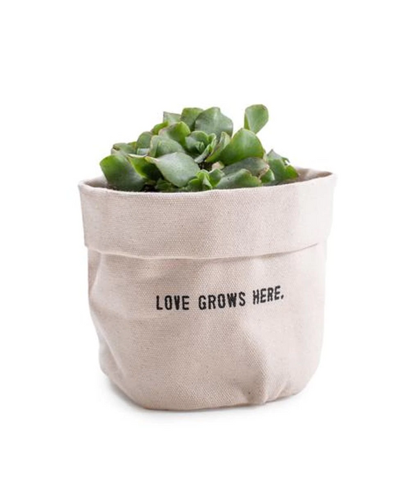 Love Grows Here Planter -  ShopatGrace.com