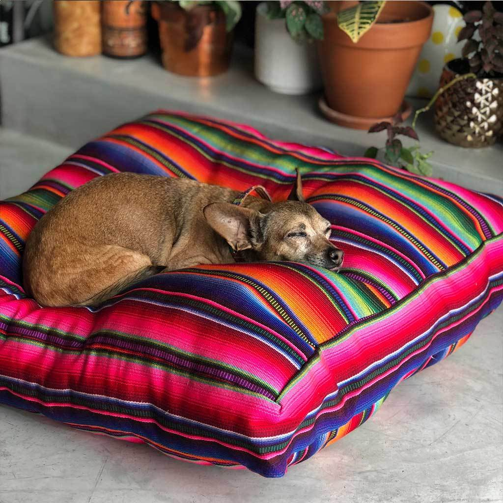 Rainbow Serape Floor Cushion and Dog Bed