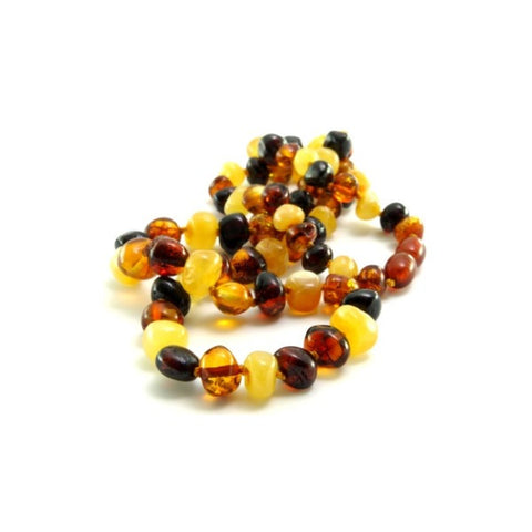 Multi Colour Round  Baltic Amber Necklace