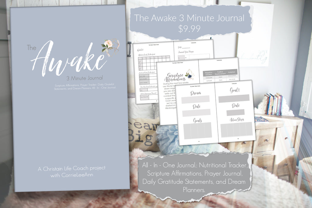The Awake 3 Minute Journal-Awake-CorrieLeeAnn'sBoutique