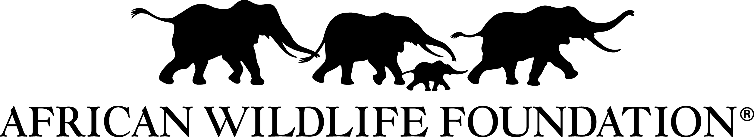In Support of African Wildlife Foundation