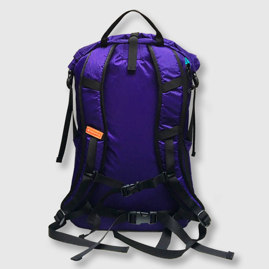 27L Alpine Commuter // Purple and Teal