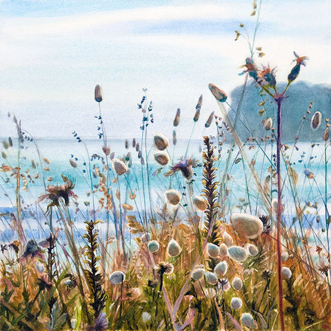 Beach Grasses, Whangamata