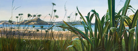 Flax and Wild Carrot, Cooks Beach